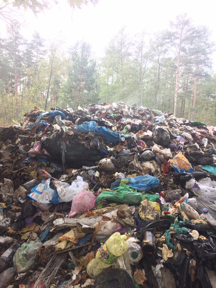 Эпопея с львовским мусором продолжается: На Житомирщине в очередной раз обнаружили несанкционированный сброс. Меморандум не действует?
