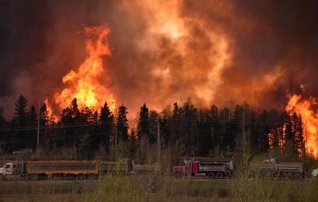 В России из-за пожаров сгорели сотни домов и люди
