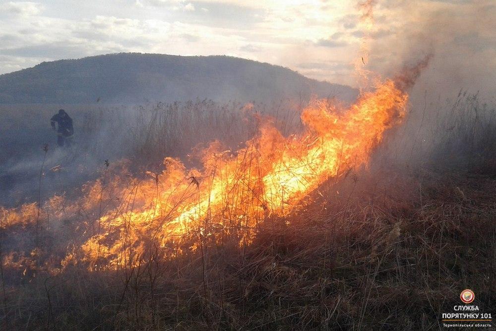 СРОЧНО! В Полтавской области горят залежи торфа! Масштабы шокируют!
