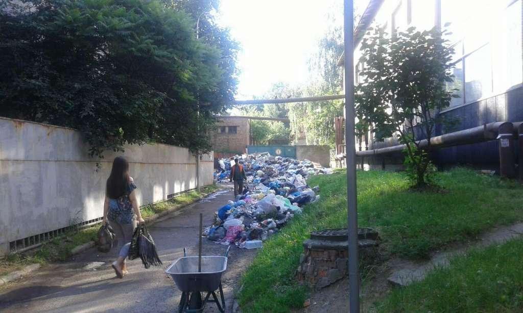 «Цветет и пахнет»: Во Львове нашли улицу с НАИБОЛЬШИМ количеством мусора! Вы зомлієте когда это увидите (ФОТО)