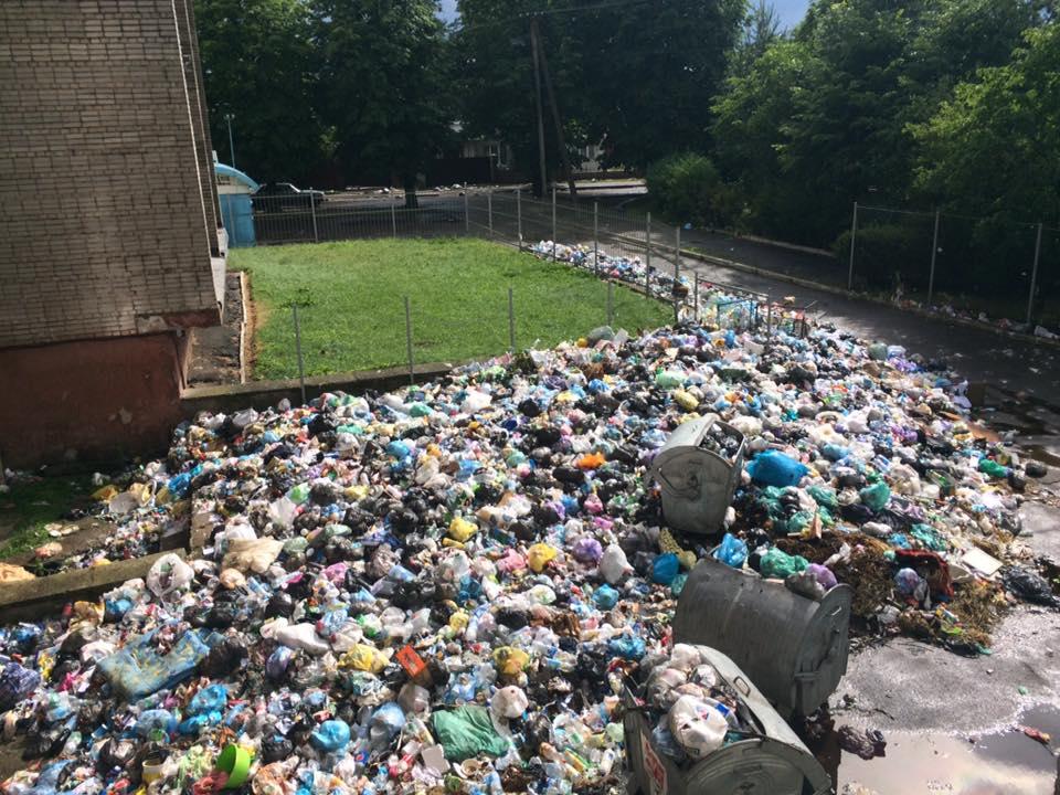 Во Львове начался вывоз мусора! Там сейчас настоящий погром! Детали поражают!