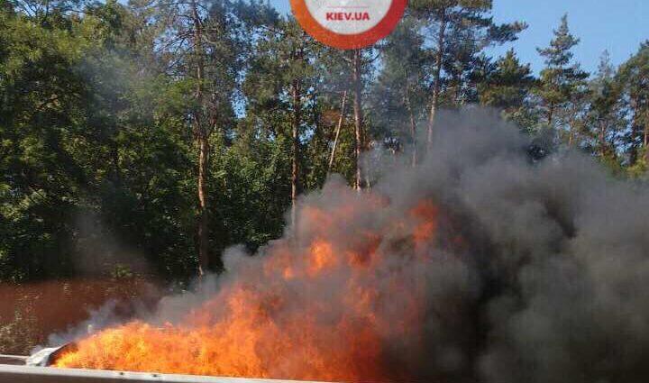 «Девочка лежит в крови»: страшная авария под Киевом! Автомобиль выгорела дотла! Детали приводят в УЖАС!