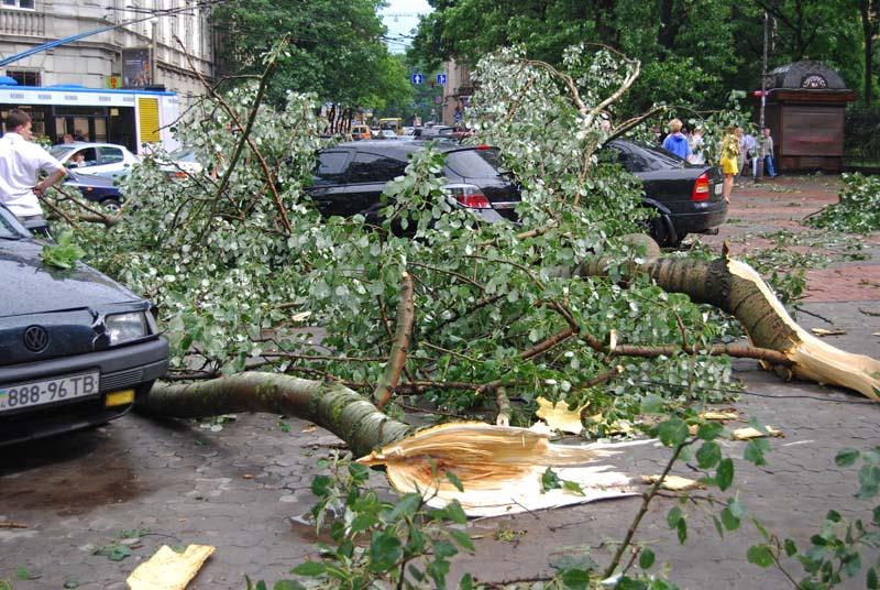 Срочно! На Сумщине произошел страшный ураган! Вы будете шокированы!