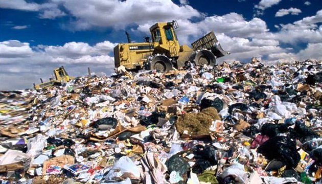 Что найдут в следующем контейнере? Шокирующая находка в львовском мусоре