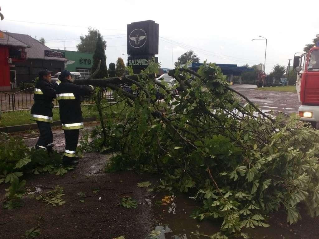 Последствия урагана в Закарпатье: улицы городов превратились в реки, а ветер повалил десятки деревьев (ФОТО)