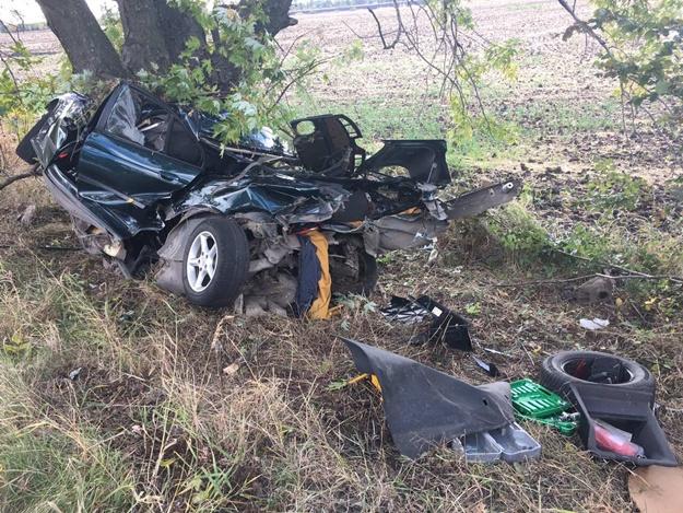 «Дерево унесло 5 жизней»: Страшное ДТП на Киевщине. От автомобиля ничего не осталось