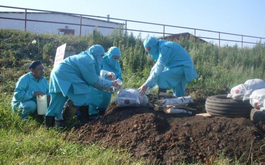 СРОЧНО !!! Смертельная опасность! У школы нашли инфицированные трупы! Что с нами теперь будет?