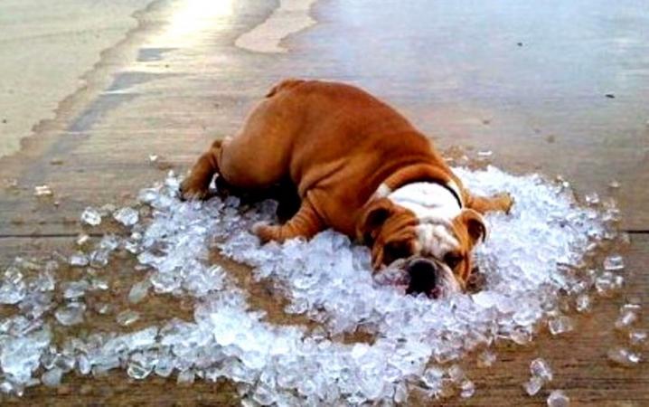 Запасайтесь водой: С 31 июля на Украину надвигается невероятная жара. Прогноз синоптиков ШОКИРУЕТ не на шутку!