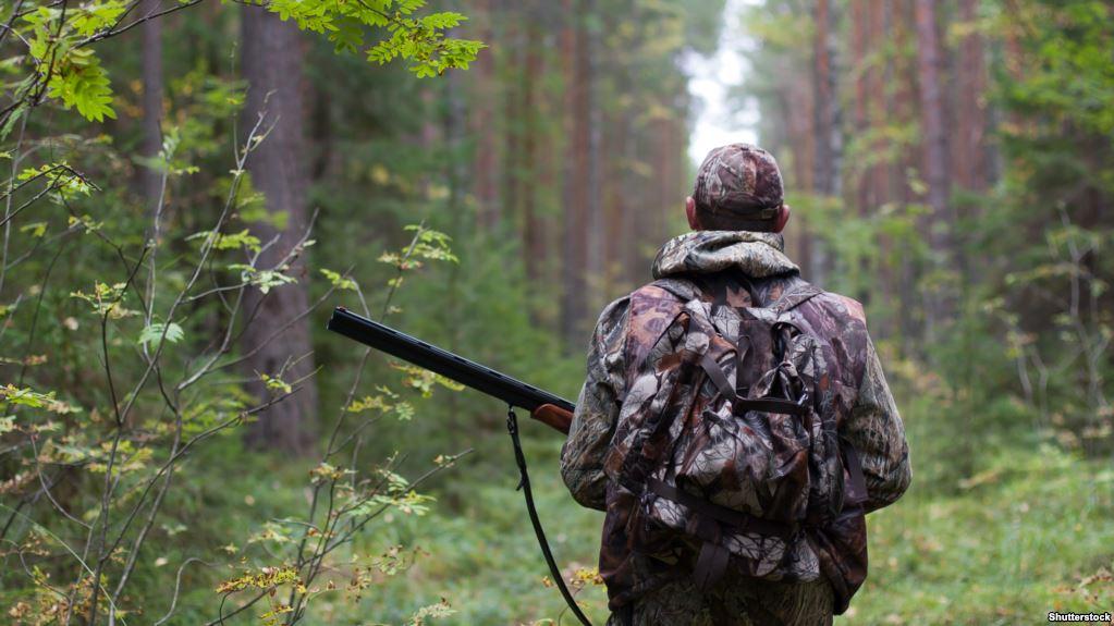 От этих штрафов браконьеров меньше станет! Узнайте что делать, чтобы не влететь в кругленькую сумму