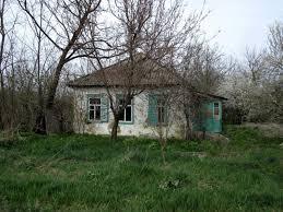 На Прикарпатье две молодые девушки не моются, и не расчесываются, а естественные потребности производят в доме
