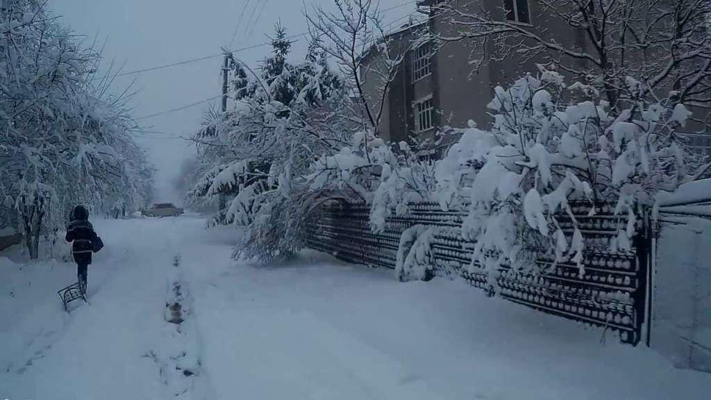 Это какая-то кара небесная! Дождь превратился в снег! Санкт-Петербург просто засыпало (ВИДЕО)