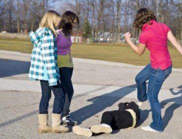 Даже звери не такие жестокие: Очередное избиение школьницы сверстниками, поставило на уши Сеть. Подробности инцидента шокируют