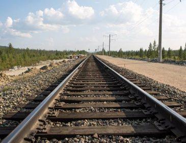 Это адская смерть!!! На Львовщине поезд переехал женщину, от подробностей мороз по коже