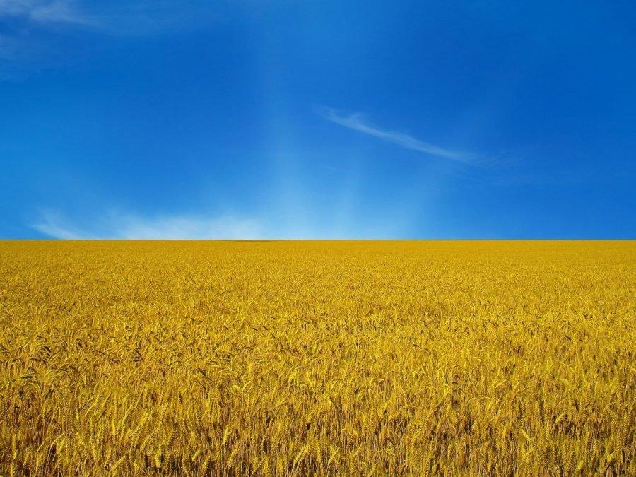 Изменения неизбежны! Известный журналист рассказал, что ждет Украину. Его слова пророческие?