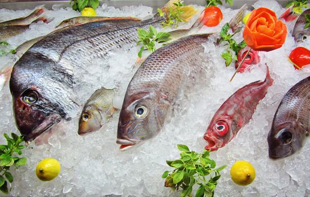 Любите рыбку? На Харьковщине нашли тонны опасной для здоровья людей рыбы, ЭТО ПРЕДУПРЕЖДЕНИЕ ДЛЯ ВСЕХ УКРАИНЦЕВ