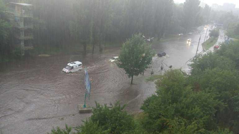 Снесло все на своем пути! В сети показали последствия мощного урагана в Украине. Отойдут они не скоро