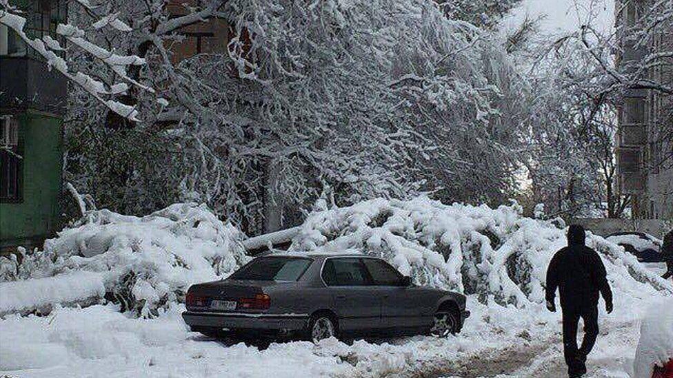 Зима уже здесь! Одну из областей Украины засыпал снег. Мы к ТАКОМУ не были готовы
