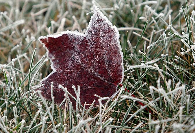 Вытаскивайте шапки и рукавицы: Синоптики предупредили о критических морозах, они начнутся уже завтра, к такому никто не готов