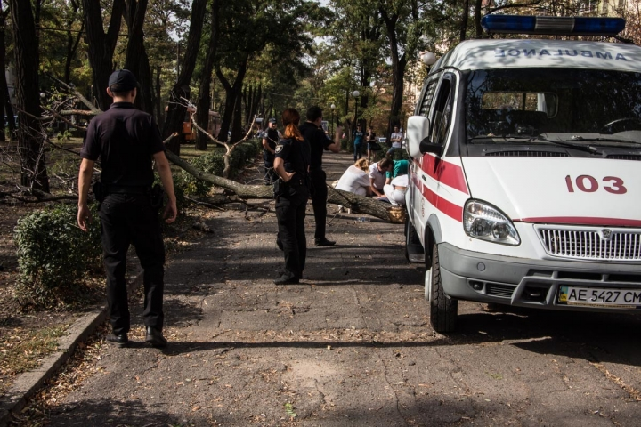 Пробиты легкие и сломанный позвоночник: в Днепре дерево убило беременную девушку прямо посреди улицы