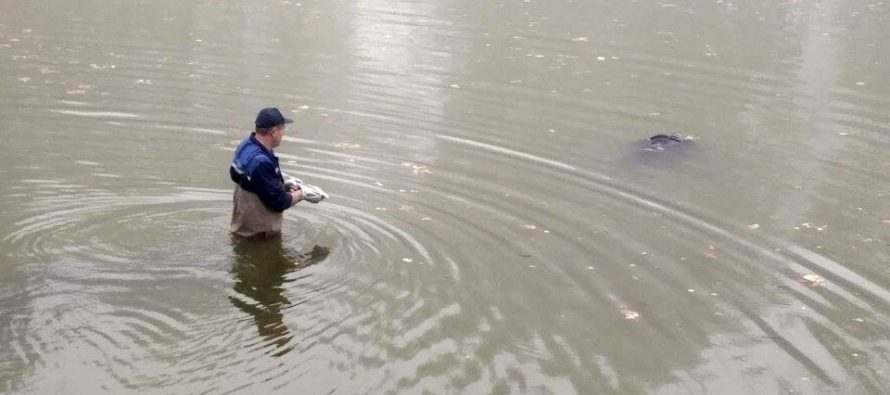 Во Львове нашли тело мужчины в водоеме (Фото 18+)