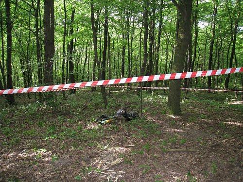 «Тело выбросил в лесополосе»: Девушку жестоко пытали и убили, а все из-за … Просто мозг взрывается от подробностей
