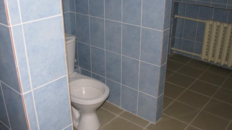 «Марш отсюда, я тебе сказала»: Злобная уборщица на Прикарпатье не допускает детей в туалет