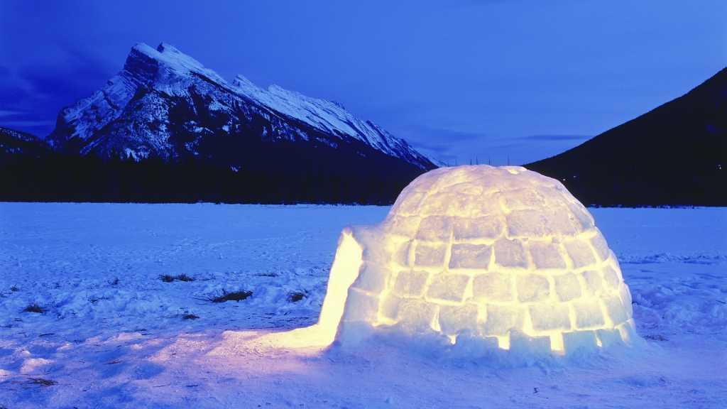 Первая ночь в палатке: в Саакашвили под Радой появился дом эскимоса