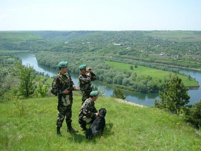 «3000 пачек…»: На Закарпатье пограничники обнаружили большую «пешую» контрабанду
