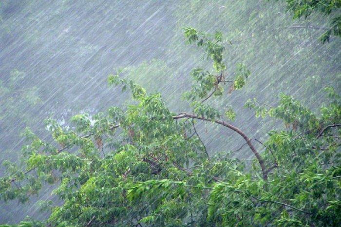 Утепляйтесь!!! Синоптики предупреждают львовян о значительном ухудшении погодных условий