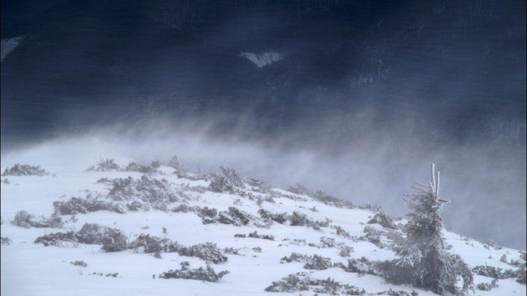 Срочно! В Украину пришла зима, на западе страны бушует настоящая метель