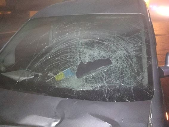 Еще одна трагедия: под Черниговом машина насмерть сбила мать с детьми