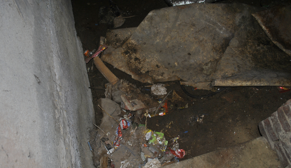 «Одну даже пришлось застрелить…»: В Днепре найдено мертвым человека, которого начали есть крысы