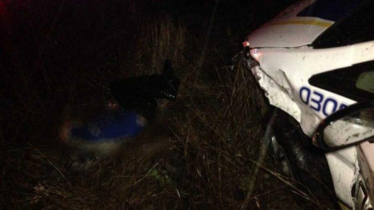 «Граната выпала у него из рук и взорвалась»: Под Николаевом полиция расстреляла мужчину (18+)