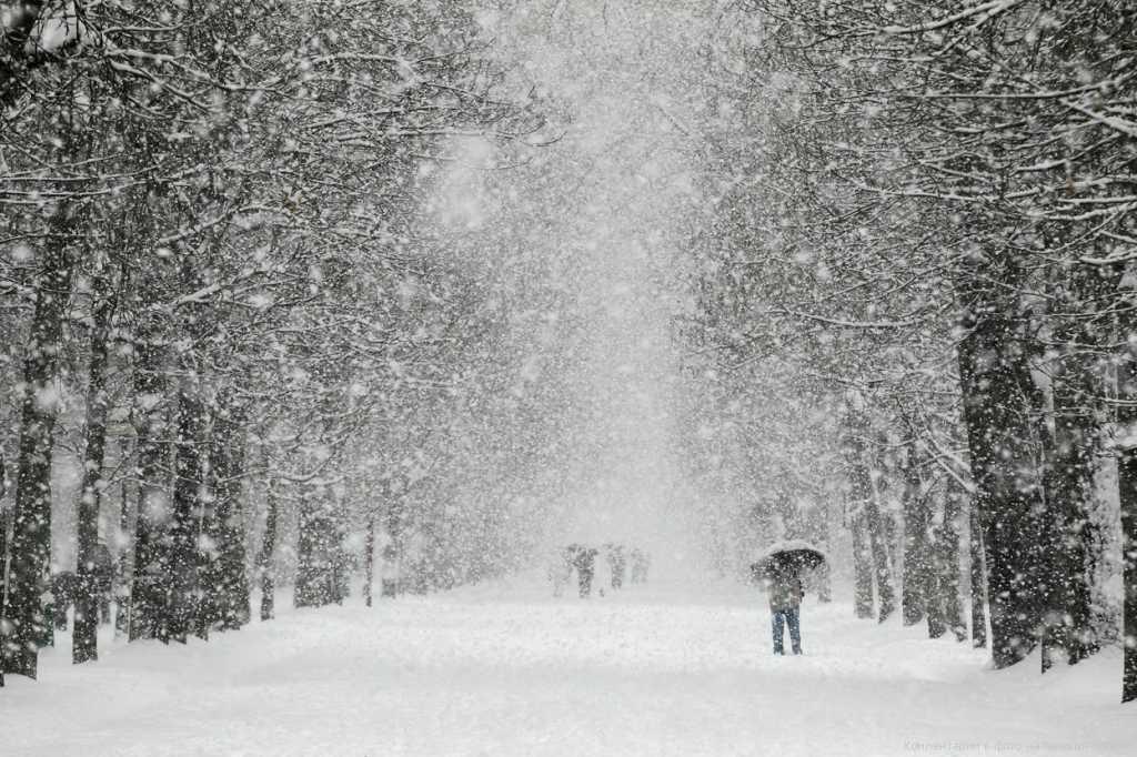 Не все будут такому рады: синоптики сообщили прогноз погоды на следующую неделю