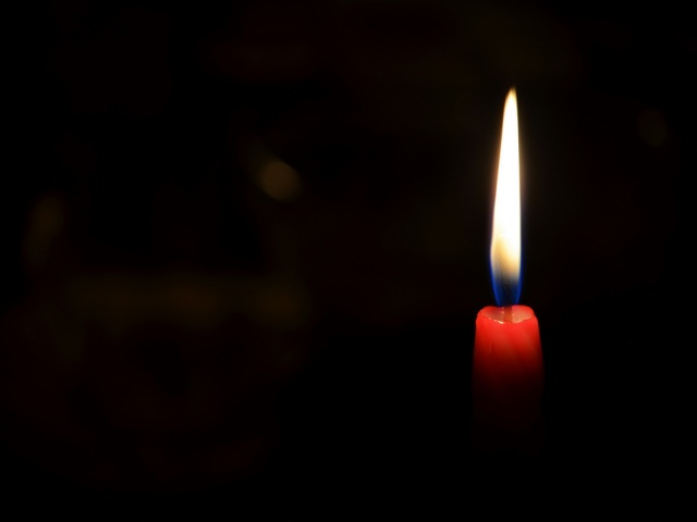 «Вся семья погибла на фронте…»: Умер известный украинец — Скрипач на крыше