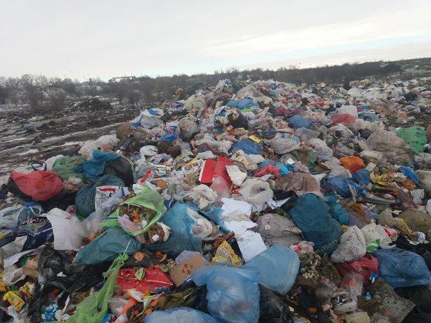 «Тело было завернуто в пакет»: На городской свалке недалеко от Первомайска обнаружили мертвого младенца