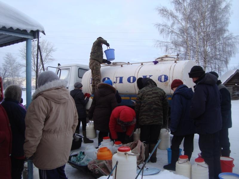 «Никаких новых санитарных ограничений не вводили»: В Кабмине сделали важное заявление по сбору молока у населения
