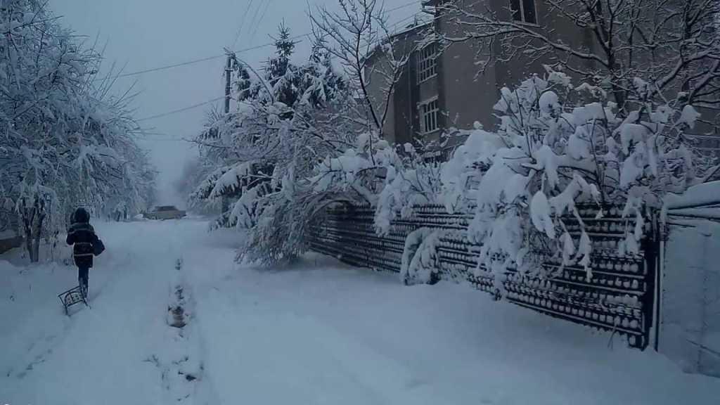 «Конечно, когда это произойдет…»: Синоптики рассказали, какой будет погода на Рождество и когда придет настоящая зима