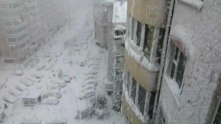 «Автомобили полностью засыпаны снегом, деревья повалены и …»: Стихия нанесла сокрушительный удар Москве, такого еще не было