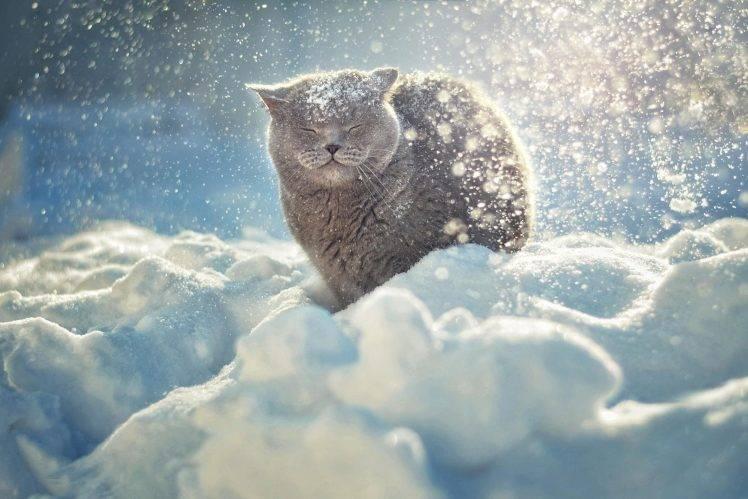 «Морозы будут доходить до…»: Синоптики сообщили, какой будет погода в марте, зима точно что-то перепутала