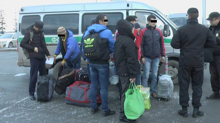 «Более 120 человек …»: В Польше массово депортируют украинцев