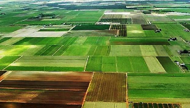«Могут иметь шесть участков»: Как получить бесплатную землю, на нее имеет право каждый