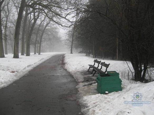 «К ней неожиданно подошел незнакомый мужчина…»: Молодую девушку изнасиловали прямо посреди известного и людного парка