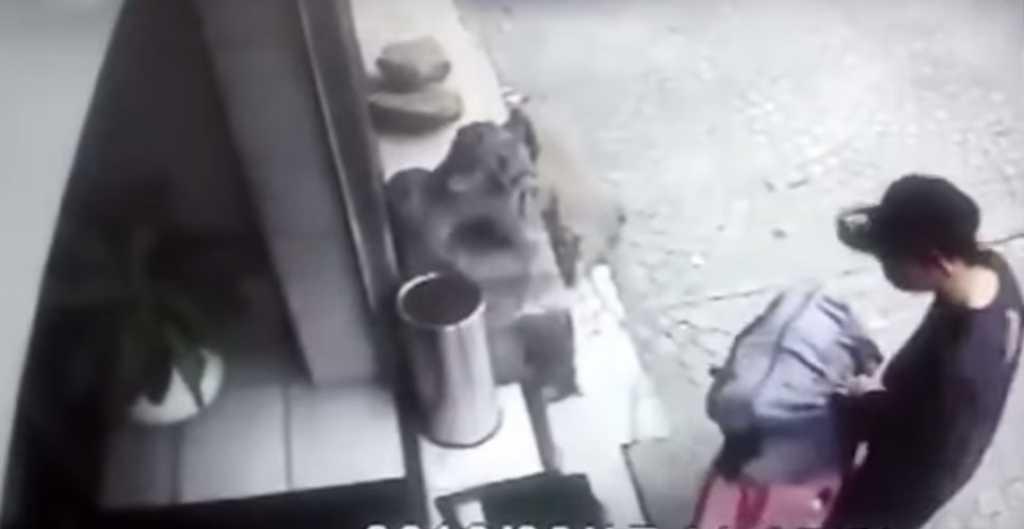 «Тело нашли через 8 дней …»: Парень задушил собственную девушку и вынес в чемодане