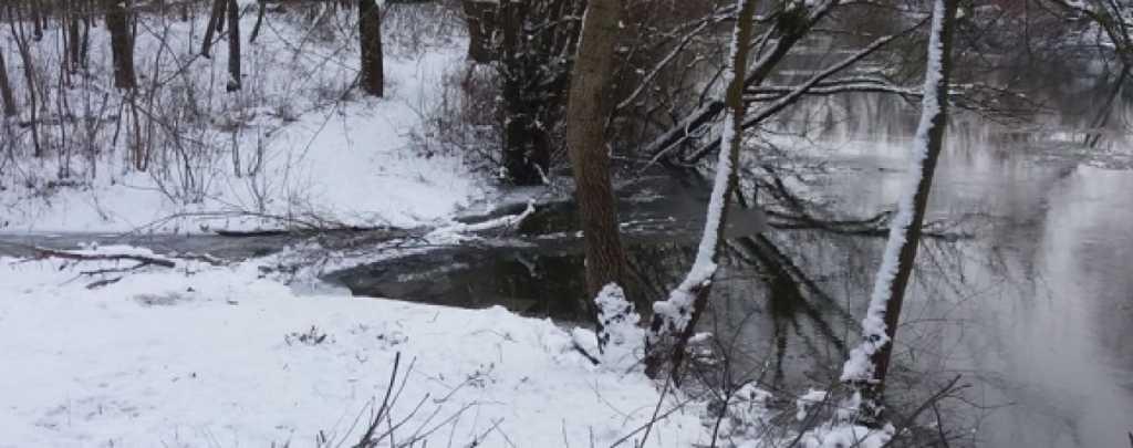 «Река с человеческими конечностями …»: На берегу водоема нашли 26 пар человеческих рук