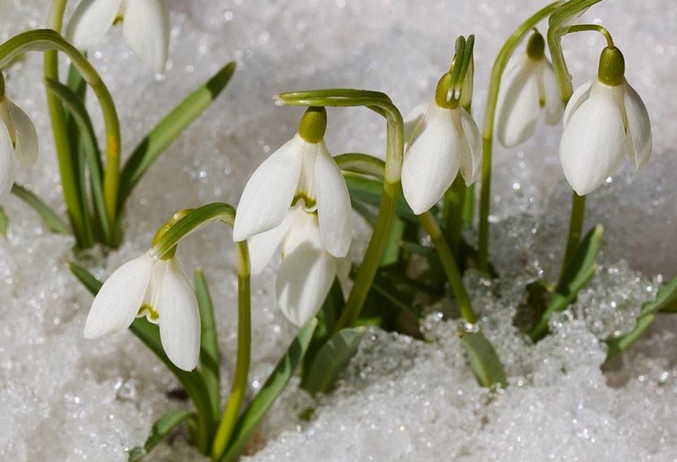 Неужели наконец весна? Какой будет погода в Украине завтра