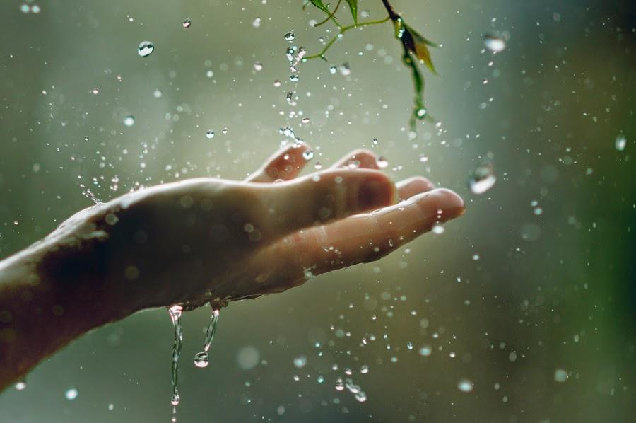 Местами — дожди: Чем завтра удивит погода