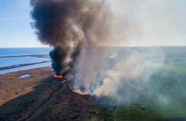 «Просто сгорели заживо …»: Появились фотографии жуткого пожара под Херсоном