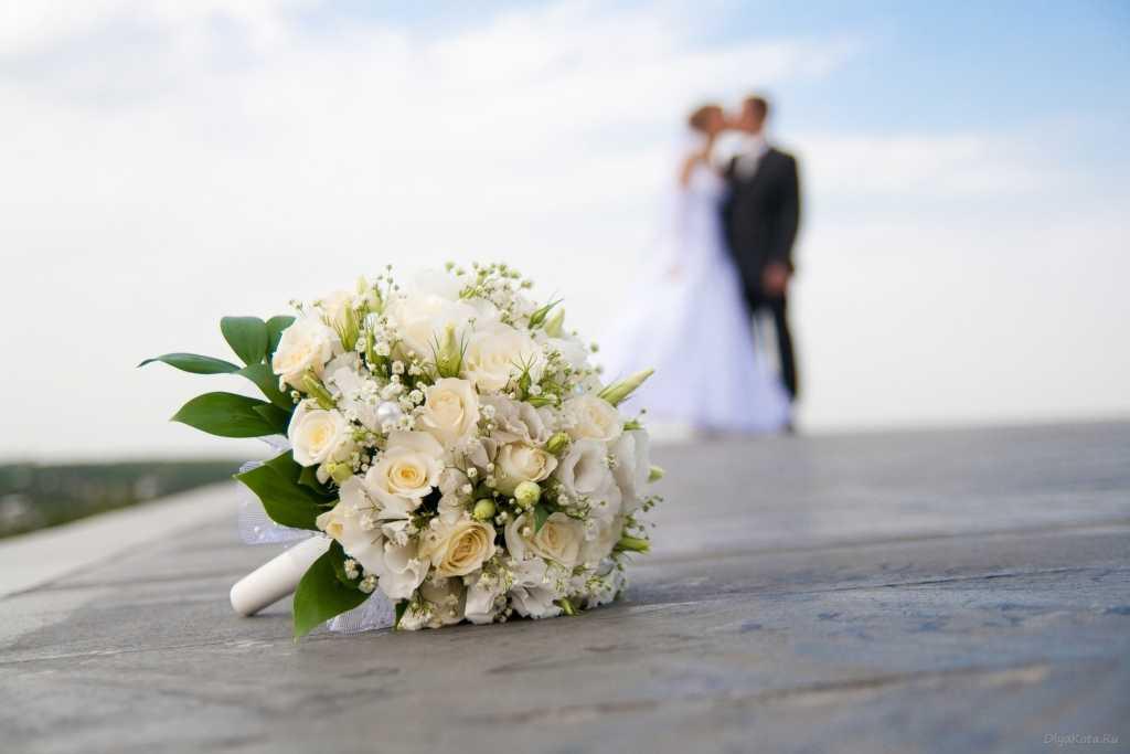 Свадьба за одни сутки: Что нужно знать, чтобы успеть жениться