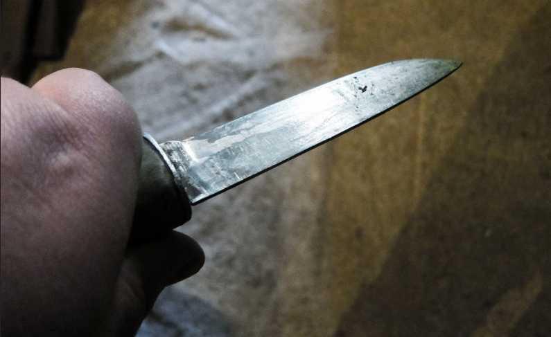 «Схватился за нож и …»: Во Львовской области мужчина во время ссоры убил свою жену